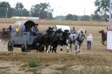 Chuck Wagon Races