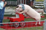 Cuzin Grumpy's Pork Chop Revue