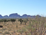 Outback52.jpg