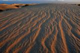 Dune Texture