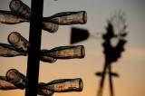 Bottle Farm at Sunset