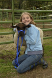 Girl and her Lamb, Taylorsville