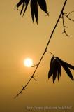 Pak Nai sunset - ¥Õªd¤é¸¨ - 015