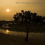 Pak Nai sunset - ¥Õªd¤é¸¨ - 021