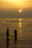 Pak Nai sunset - ¥Õªd¤é¸¨ - 100