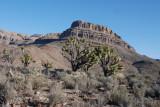 The trail toward Spirit Mountain