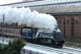 Sir Nigel Gresley Steam Locomotive 60007, Darlington