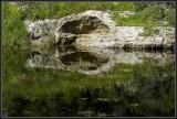 A hidden winter pond near Dovev