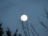 The moon out of focus
