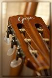 Guitar 02_hf.jpg