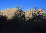 Organ Mountains from trail in Dripping Springs area