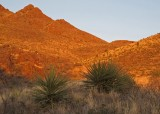 Sunset on Organ Mountains from Achenback Canyon trail