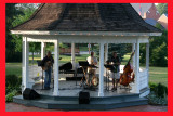 Elderberryies At Music InThe Park.
