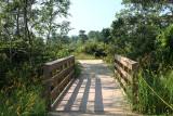 Foot Bridge ShadowSeptember 5, 2008