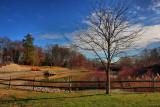 Park in HDRNovember 24, 2009