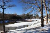 Park LandscapeJanuary 9, 2010