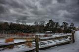 Snow Scene in HDRFebruary 17, 2010