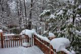 SnowstormFebruary 24, 2010