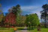 Park in HDRApril 29, 2010