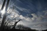 CloudsNovember 28, 2007
