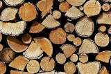 Logs (before)