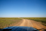 The Southern Gobi Desert, green from summer rains, is criss-crossed by dirt roads