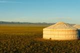 Gobi Discovery Camp