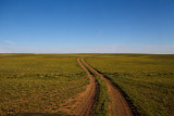 The Southern Gobi's flat plains seem to go on forever
