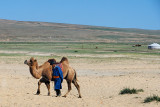 Man with Bactrian Camel
