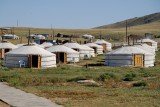 Ger camp in Hustai National Park