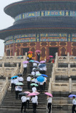 Colorful umbrellas ascending the steps of the Temple of Prayer for Good Harvest