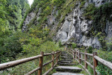 Hiking trail at Panda Valley -- the ultimate stair-master!