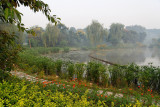 Small lake inside the Chengdu Panda Breeding Base