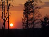 sunrise_sunset__