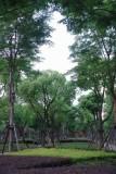 Xujiahui Park