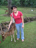 Aneira petting the deer