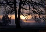 A WINTER SUNRISE