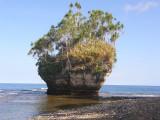 Captain Cooks Rock