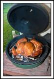 12.7 Pound Turkey