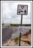 All Roadside Activities?