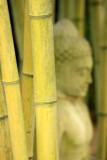 Thinking of Buddha*