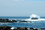 Monterey and 17 Mile Drive