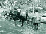 Dominican-Republic-04-IMG_0007.jpg