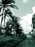 Dominican-Republic-04-IMG_0014.jpg
