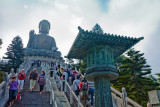 Up to see the Buddha