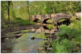 Spring Morning Along Fleecydale