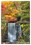 Cuttalossa Falls