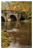 Autumn at Pidcock Stone Bridge