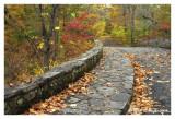 Autumn Crossing on Pidcock Bridge
