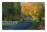 Autumn Lane, Tinicum